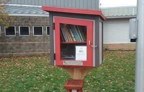 Little Free Library  through MDE grant